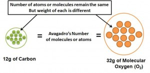 The gram-molecular weight of a molecule or atom has the same number of molecules or atoms which is equal to Avagadro's Number