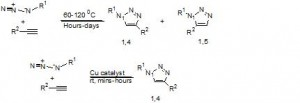 Scheme I: 1, 3-Cycloaddition reaction in the presence and absence of Cu1+ catalyst.