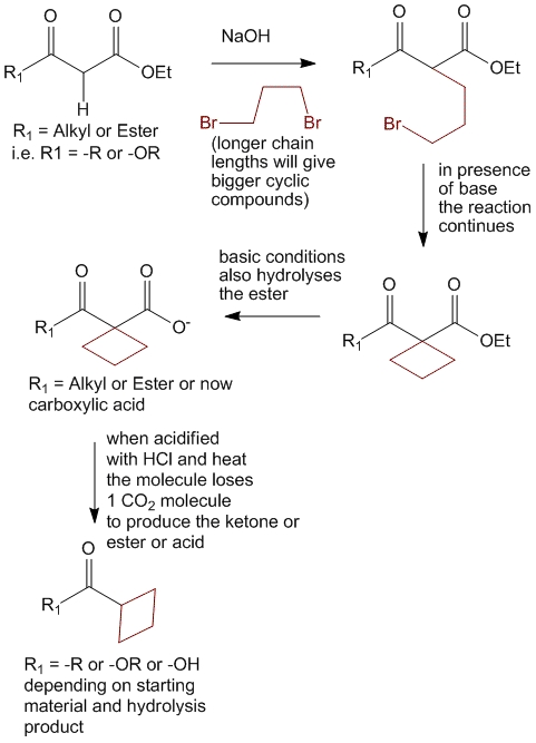 Using the non-selective nature of acetoacetic ester synthesis and malonic ester synthesis to produce cyclic compounds